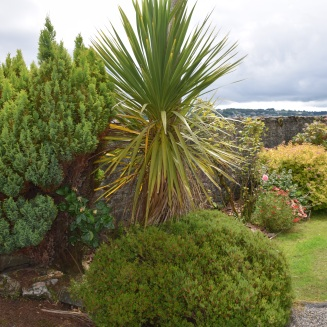 new july gardens 2